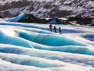 小型バスで行く南海岸と氷河ハイキングツアー