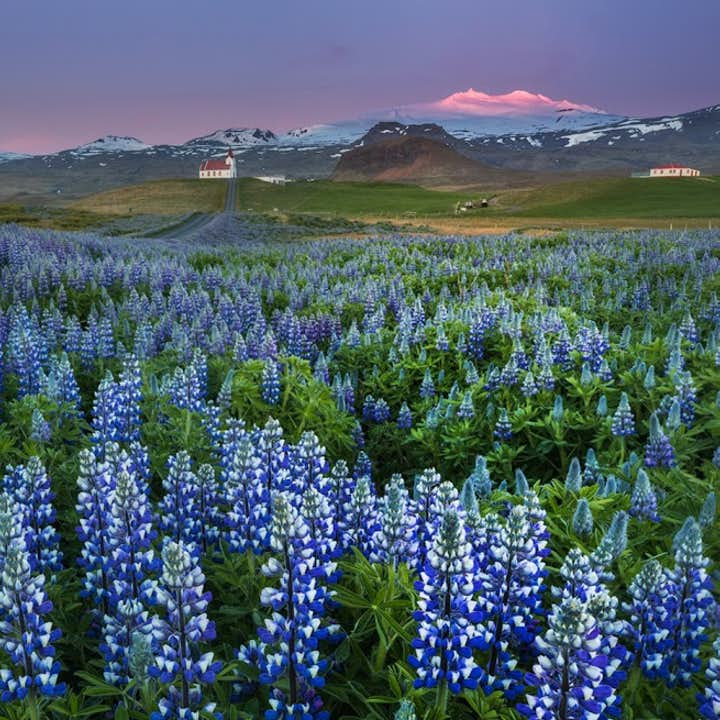 三大冰岛夏季热门一日游优惠套票|黄金圈+斯奈山半岛+火山内部探险