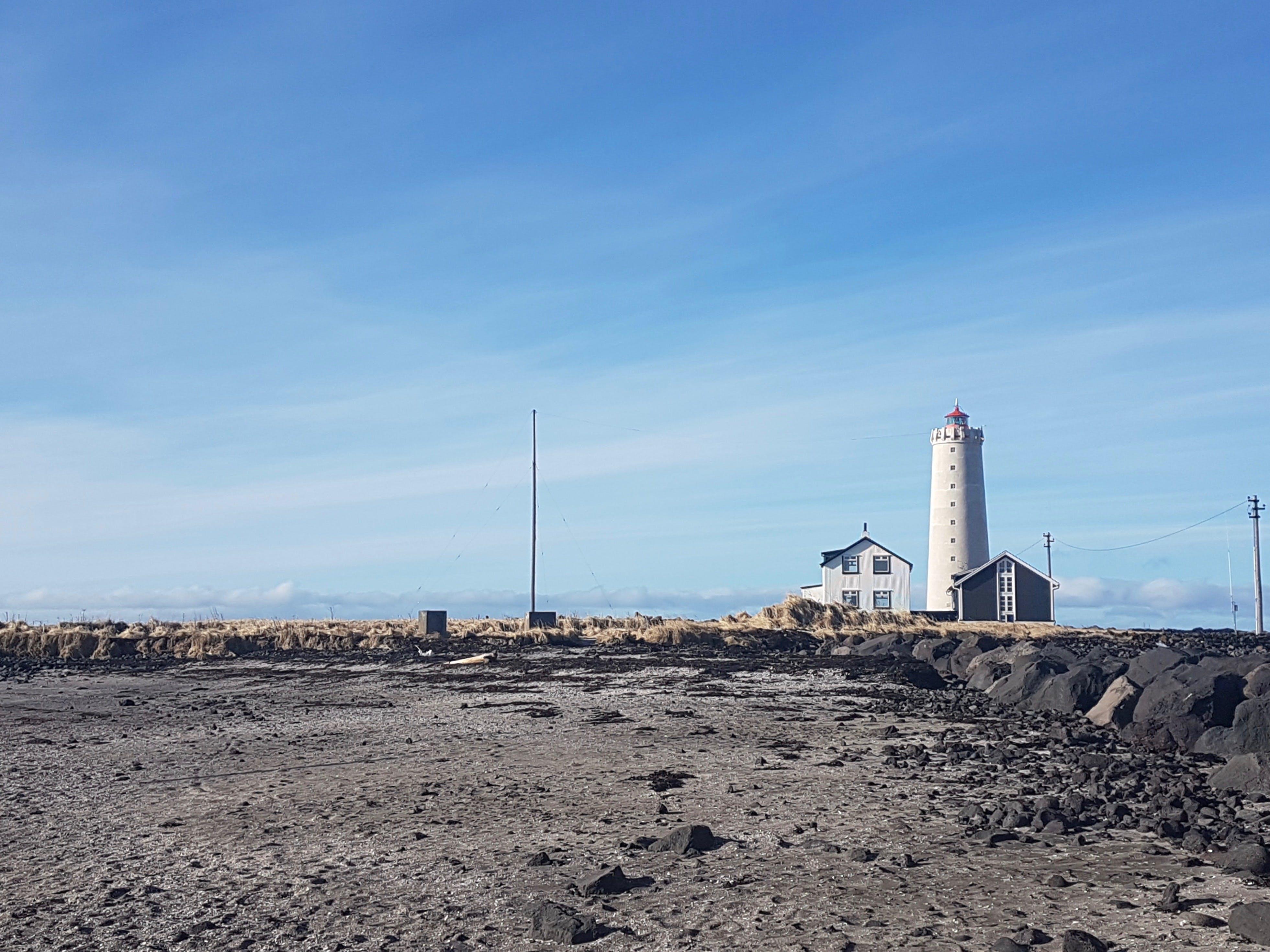Wandering Seltjarnarnes | Nature Hike | Eco Tour