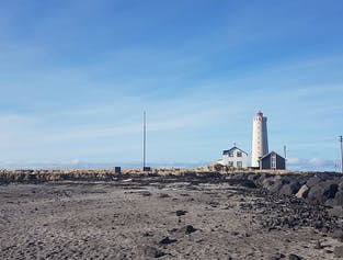 Eco-Friendly Reykjavik Beach Trail | Seltjarnarnes Nature Hike