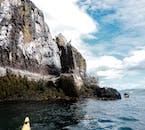 Admirez la beauté et la faune de la baie de Breiðafjörður en faisant une excursion en kayak de mer.