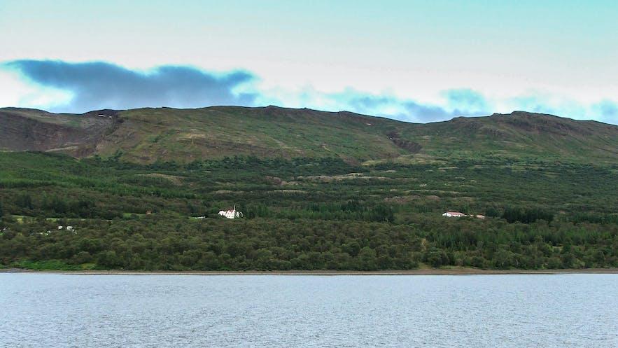 Hallormsstaðaskógur国家森林是冰岛最大的森林