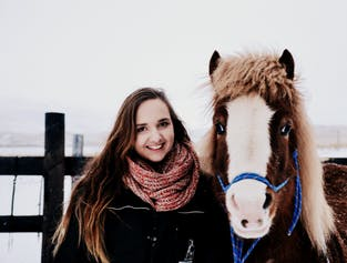 Family-Friendly Tour | Meet, Feed & Photograph Icelandic Horses