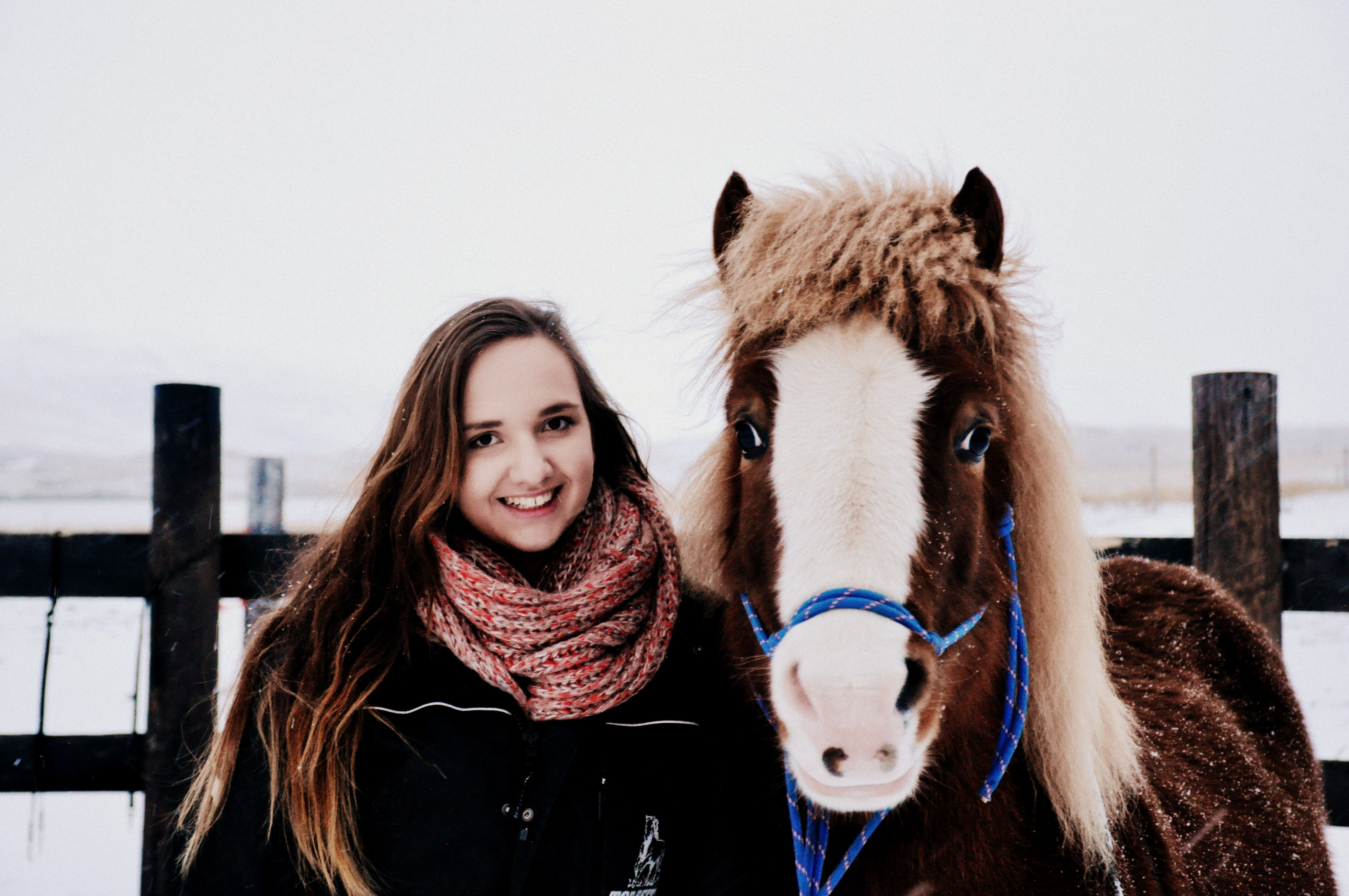 Come and meet the friendly Icelandic horse on this photography tour.