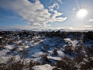 Lake Myvatn Sightseeing and Hot Springs Tour from Akureyri