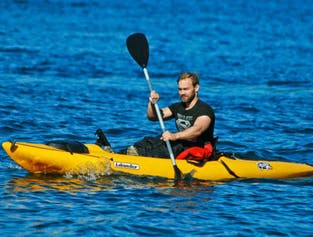 Kayak sous le Mt. Kirkjufell | Activité à Snaefellsnes