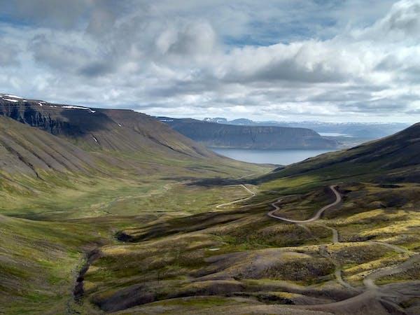 Wild Westfjords