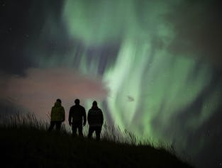 Northern Lights, Black Sand Beaches and a Lobster Feast | Private Tour