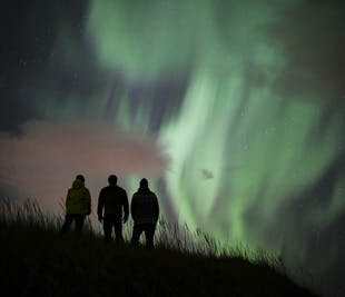 Northern Lights, Black Sand Beaches and a Lobster Feast   Private Tour