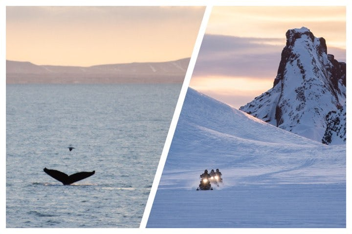 This combination of tours allow you to race across a glacier on a snowmobile and search for whales on a whale watching excursions.