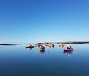 파워 챌린지 서클 카약 투어 | 남부 아이슬란드
