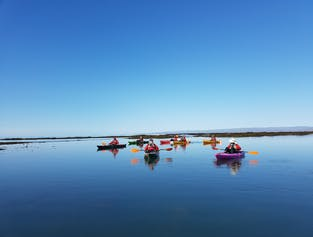 The Power Challenge Circle Tour | Kayaking in South Iceland