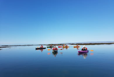 The Power Challenge Circle Tour   Kayaking in South Iceland