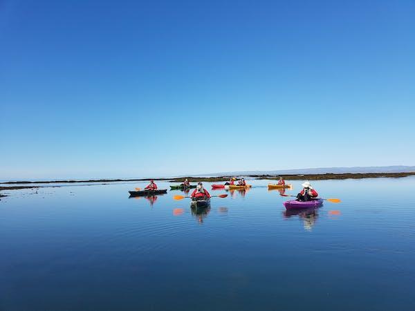 Kayakferðir ehf.