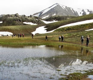 Hikers Tour from Rjúpnavellir and Leirubakki to Reykjavik