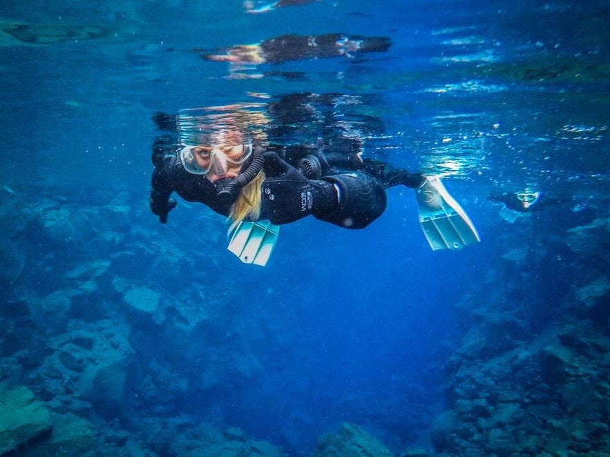 A snorkeller, well protected by their wetsuit