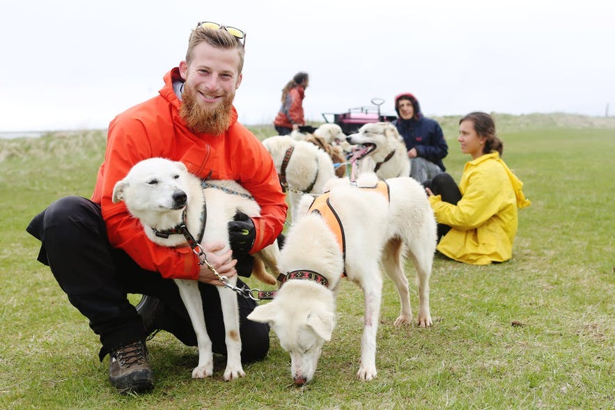 Dog sledding is the perfect means to meet man's best friend whilst in Iceland.