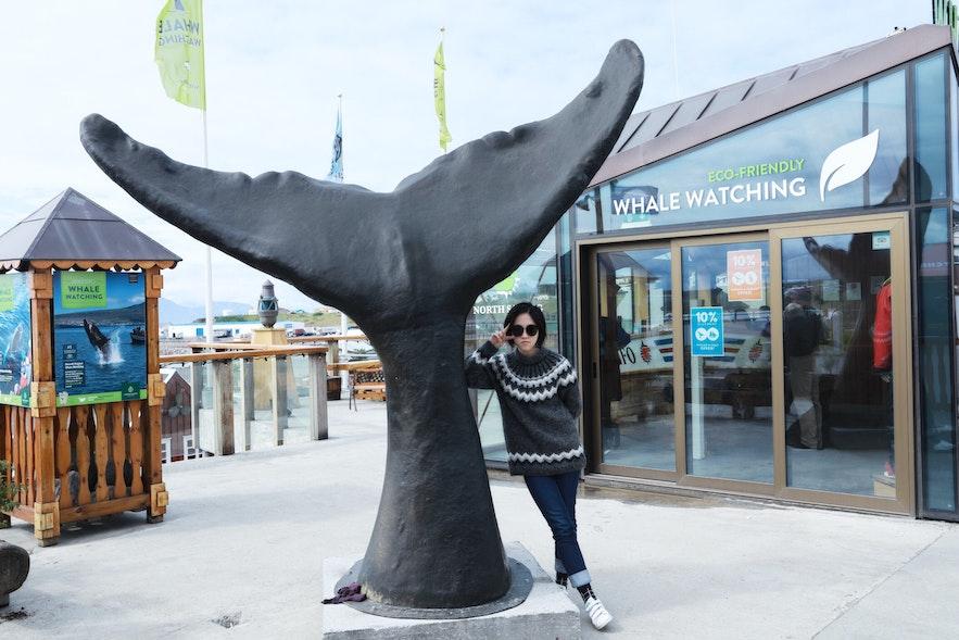 冰島胡薩維克觀鯨