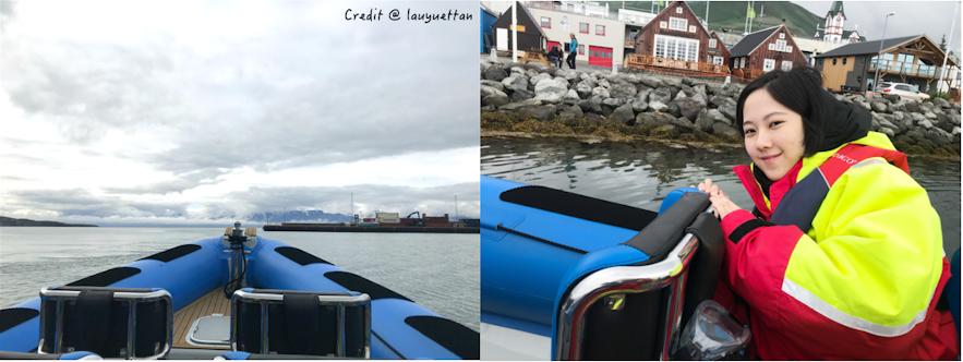 冰島觀鯨快艇船上視角