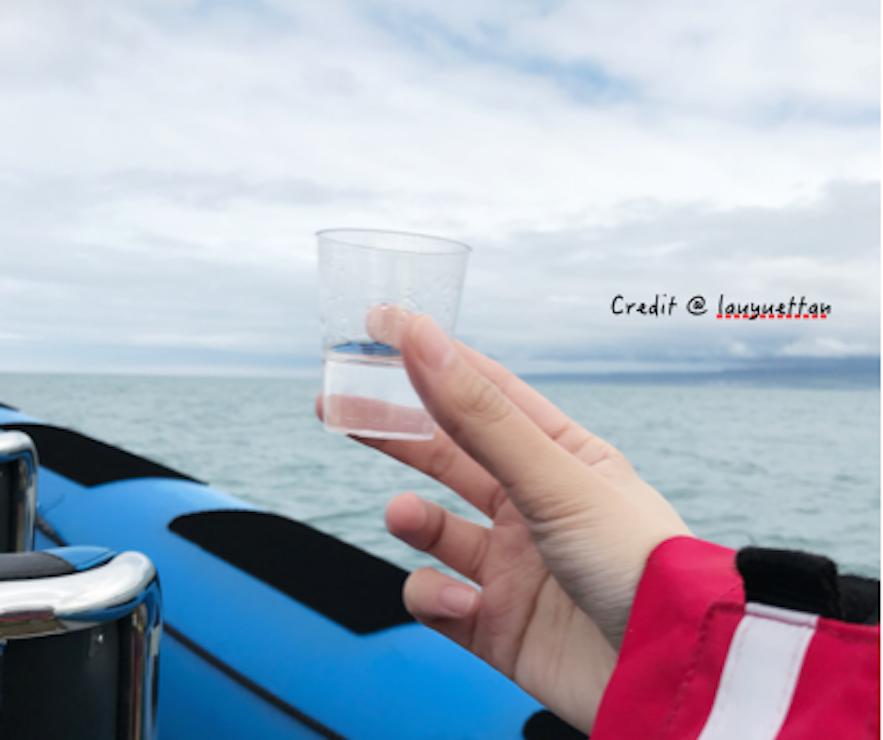 冰島Brennivín 酒