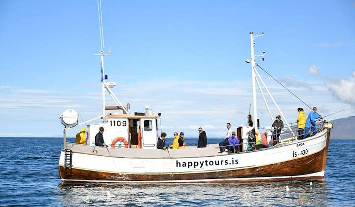 Small Group Sea Fishing Gourmet Tour   From Reykjavík