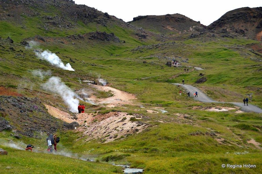 Landskab på vej mod Reykjadalur-floden med varme kilder i Island