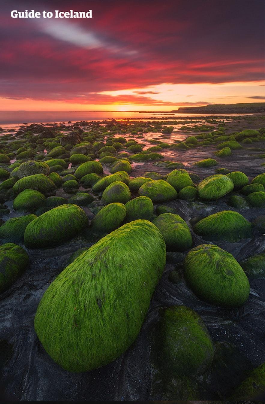 Закатное летнее солнце освещает загородный исландский пейзаж