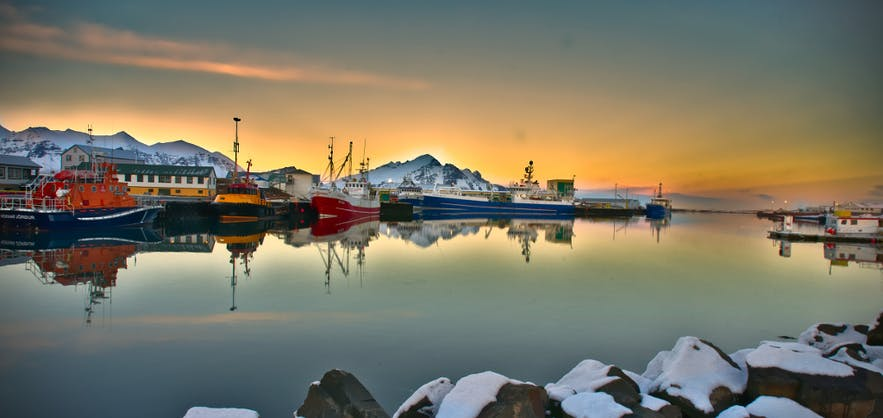 Hofn harbour is a beautiful location to spend the evening.