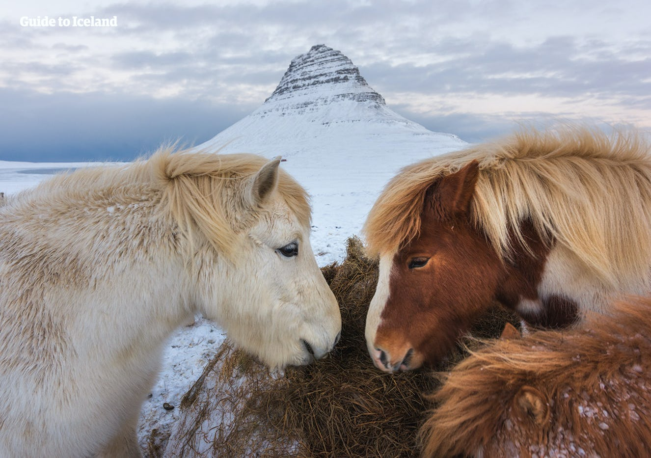 Автотур «Игра престолов» | Исландия за 10 дней