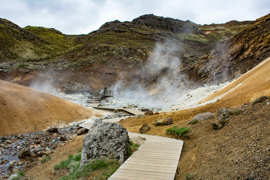 Steam rising on either side of the wooden walkway at Seltún.