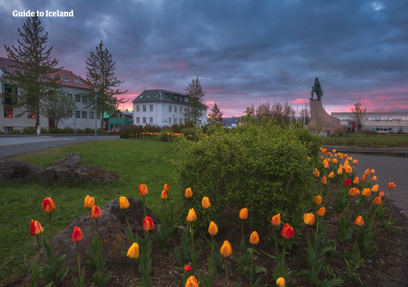 Flores rojas y amarillas en la ciudad de Reikiavik.
