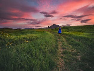 Midnight Sun Photography Workshop | 11-Days in the Westfjords