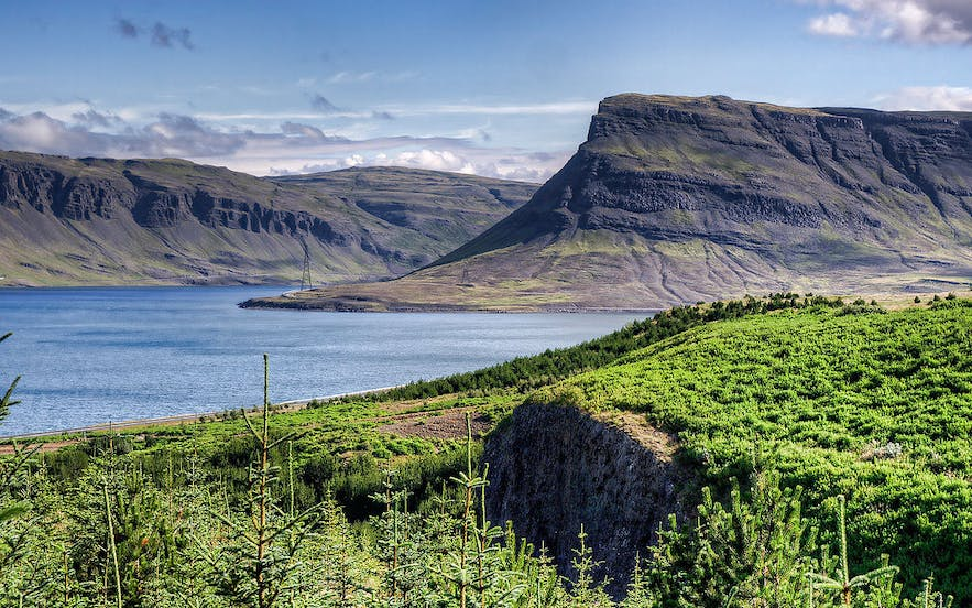 Hvalfjordur, in west Iceland, translates to 'Whale Fjord'.