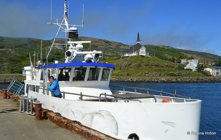 Whale Watching from Hólmavík in the Westfjords of Iceland with Láki Tours