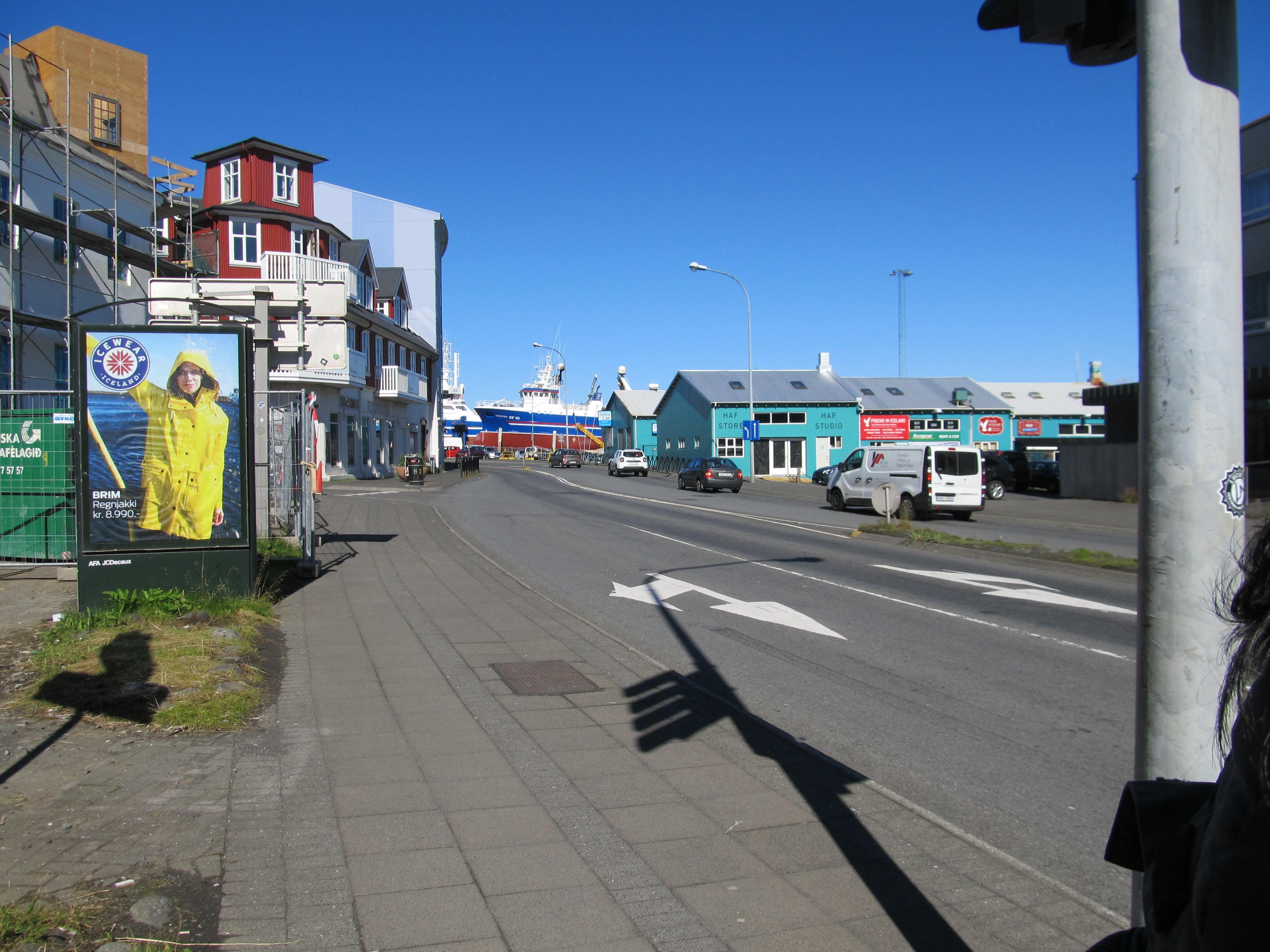 【体験談】アイスランドのパフィンツアーとホエールウォッチング