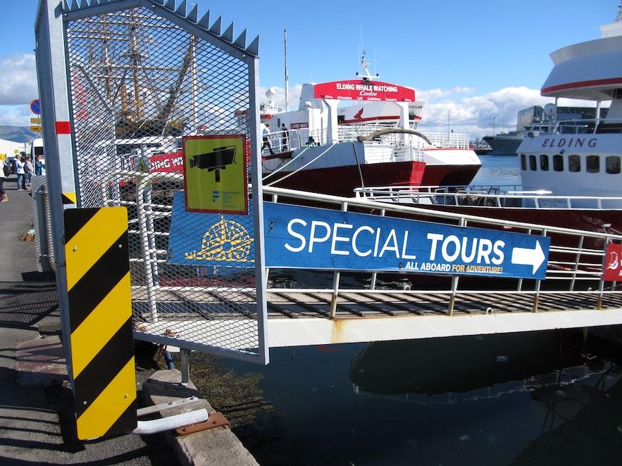 パフィンウォッチングツアーのボートへ
