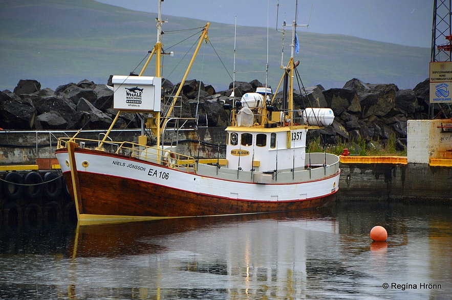 The whale watching boat at Hauganes village