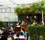 Golden Circle Tour with Secret Lagoon & Lunch at Fridheimar Greenhouse