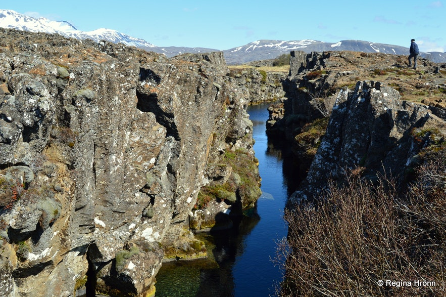 Nikulásargjá rift, Þingvellir nationla park