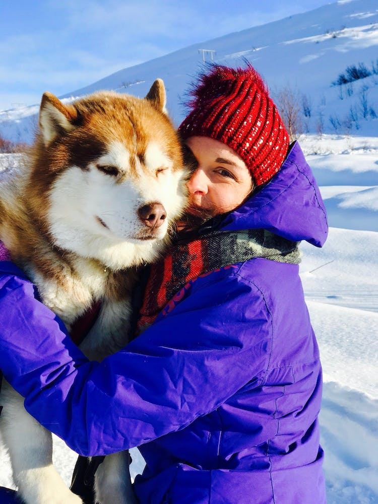 Give the Huskies a cuddle after a dog sledding tour.