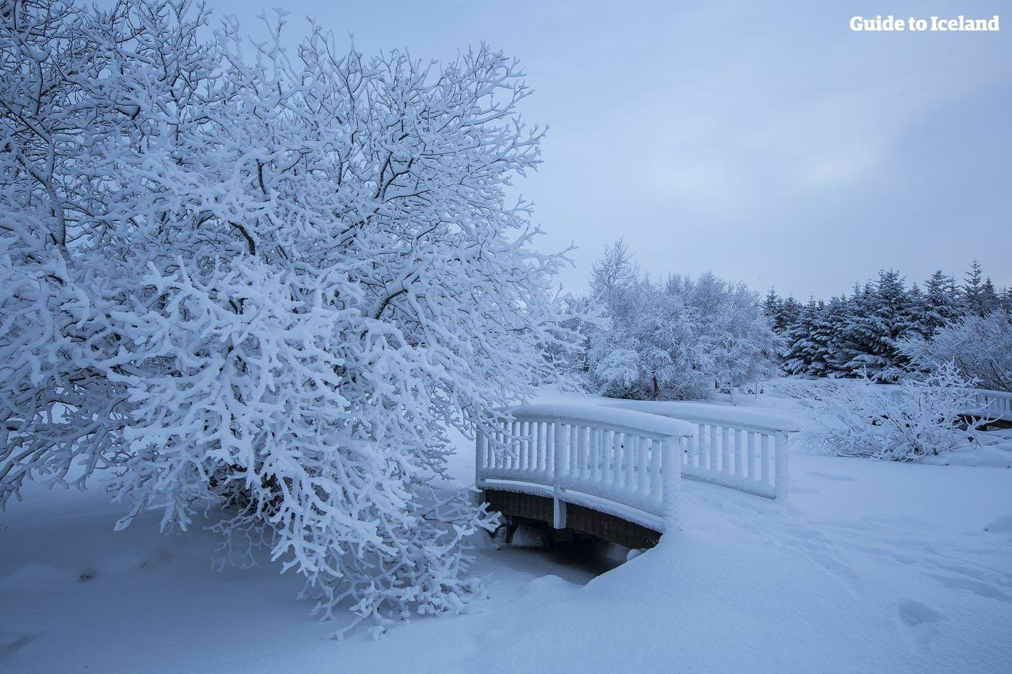 Snow-covered Reykjavík city in the winter.