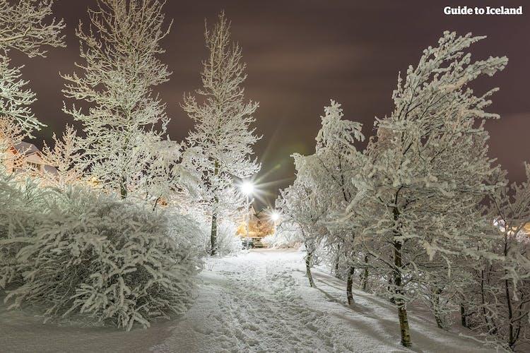 Un chemin enneigé dans la ville de Reykjavík.
