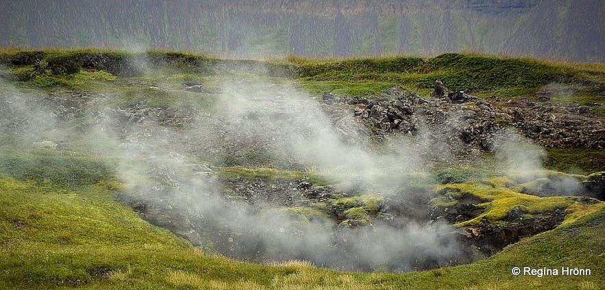 Smoking landscape close to Þeistareykir