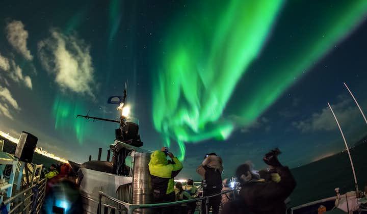 Noorderlicht-bootcruise vanuit Reykjavík