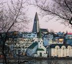 13일 겨울 렌트카 여행 패키지 | 링로드 시계 방향 일주 및 스나이펠스네스 반도