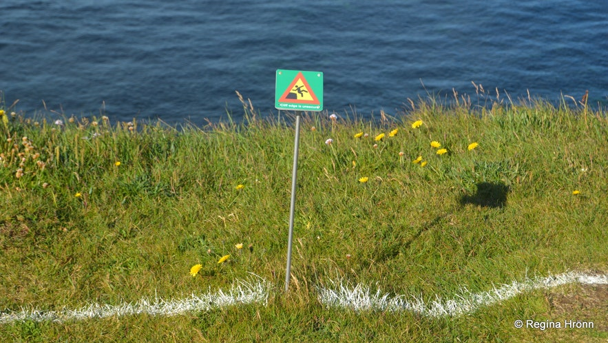 Látrabjarg birdcliff in the Westfjords