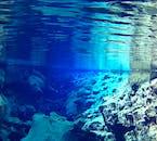 Explore Silfra Fissure | Drysuit Snorkelling Tour