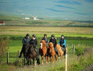 Countryside Adventure - Explore the meadows and rivers of Skagafjörður, North Iceland