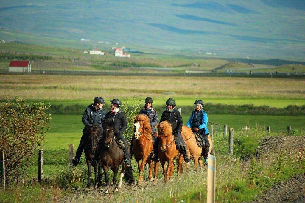 Riders near Varmahlíð, in Skagafjörður valley, riding on a country path.