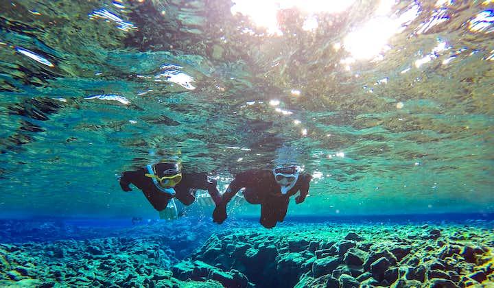 Den gylne sirkel og snorkling i Silfra for liten gruppe   Gratis undervannsbilder